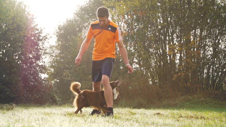 Slalom durch die Beine mit Australian Shepherd